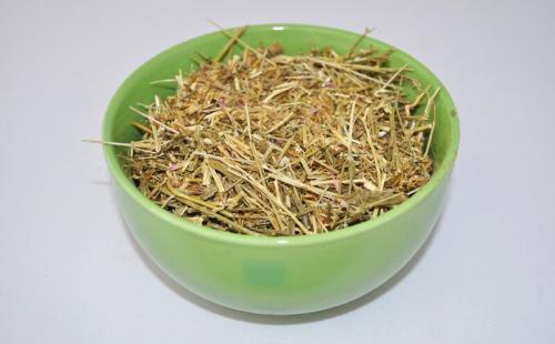 Золототысячник – лечебные свойства и противопоказания. Трава золототысячника (обыкновенный, зонтичный) – применение